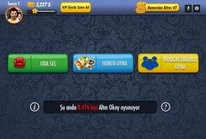 oyuna-giris-300x202